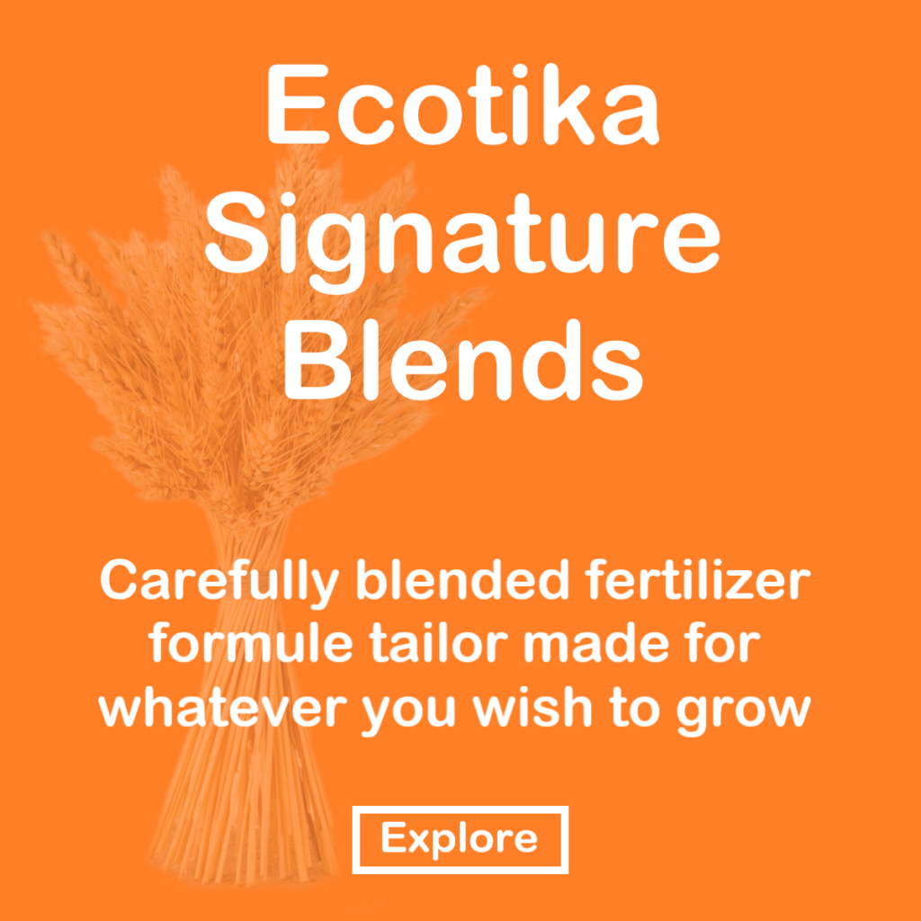 Ecotika Signature blends
