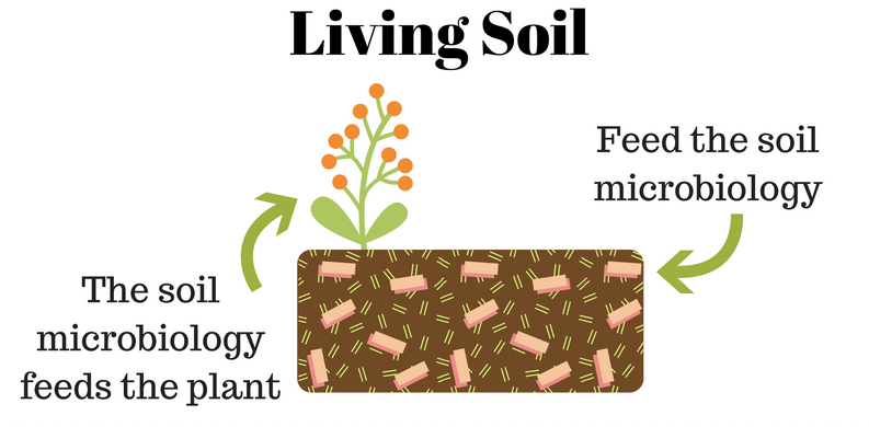 Fertilizer blends feed soil microbiology and create living soil.