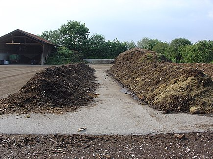 Compost is a good way for waste management.
