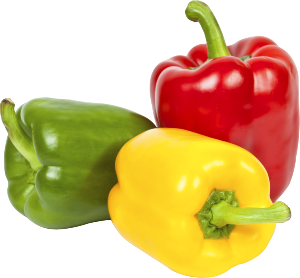 Bell Peppers are Night Shades
