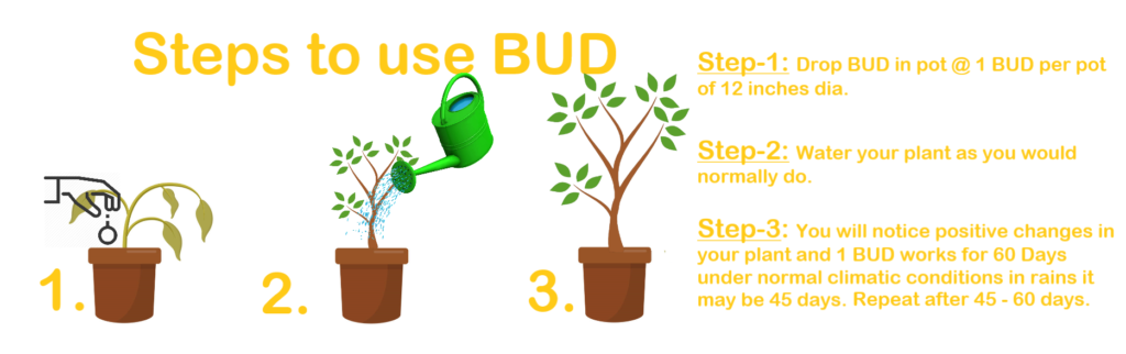 BUD usage Instructions
